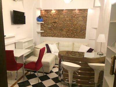 Appartement te huur vanaf 24 Aug 2019 (Via San Zanobi, Florence)