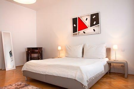 Appartamento in affitto a partire dal 12 Jan 2020 (Türkenstraße, Vienna)