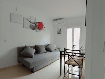 Apartamento para alugar desde 14 nov 2018 (Calle Antonio Prieto, Lavapiés)