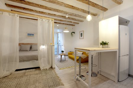Apartment for rent from 01 Oct 2020 (Carrer de Sant Gil, Barcelona)