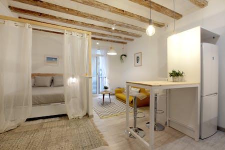 Apartamento de alquiler desde 15 Dec 2019 (Carrer de Sant Gil, Barcelona)