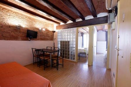 Wohnung zur Miete von 01 Apr. 2019 (Carrer d'en Roca, Barcelona)