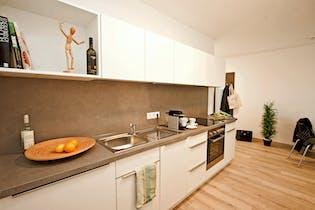Apartment for rent from 20 Jan 2019 (Kaisermühlenstraße, Vienna)