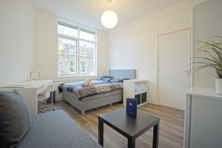 Private room for rent from 01 Feb 2019 (Krugerstraat, Utrecht)