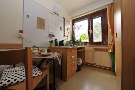 Habitación de alquiler desde 01 Jan 2019 (Starkfriedgasse, Vienna)