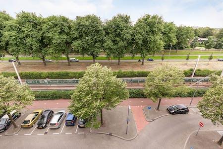 Habitación de alquiler desde 01 ago. 2019 (Kobelaan, Rotterdam)