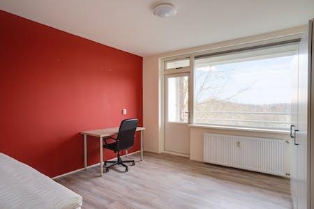 Chambre privée à partir du 01 Aug 2019 (Cornelis Bloemaertsingel, Rotterdam)