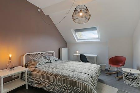 Stanza privata in affitto a partire dal 01 Jul 2020 (Chaussée de Waterloo, Ixelles)