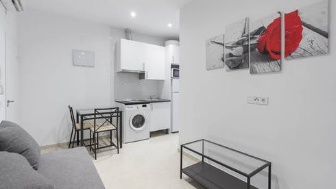 Apartment for rent from 01 Dec 2019 (Calle de Antonio Prieto, Madrid)