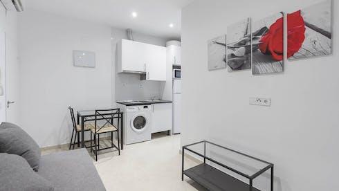 Apartment for rent from 01 Jun 2019 (Calle de Antonio Prieto, Lavapiés)