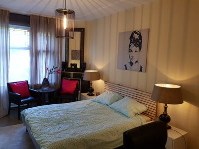 Private room for rent from 10 Feb 2020 (Apeldoornselaan, The Hague)