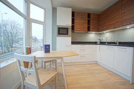 Apartment for rent in rotterdam honingerdijk for Honingerdijk rotterdam