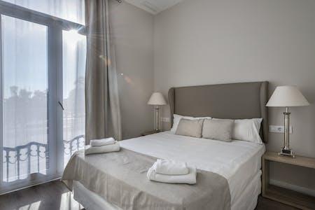 Apartment for rent from 23 Apr 2019 (Passeig de Colom, Barcelona)