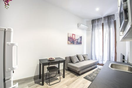 Apartment for rent from 01 Jan 2020 (Calle de los Jardines, Madrid)