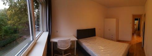 Private room for rent from 26 Jun 2019 (Joseph Haydnlaan, Leiden)