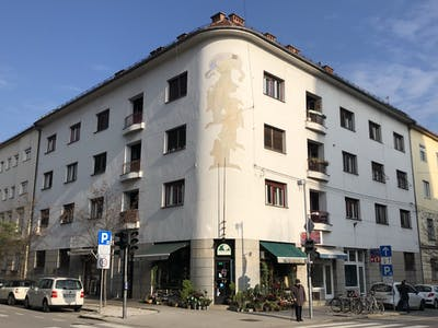 Shared room for rent from 09 Jan 2019 (Rozmanova ulica, Ljubljana)
