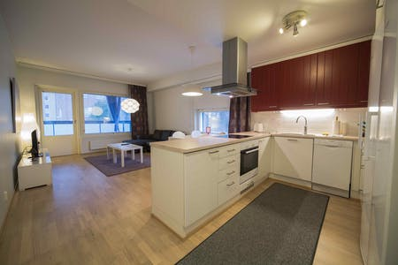 Apartment for rent from 21 Jan 2019 (Ratapihankatu, Turku)