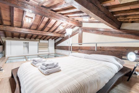 Apartment for rent from 21 Jan 2019 (Via di Mezzo, Florence)