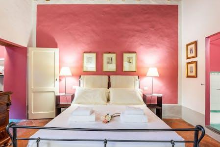 Appartement te huur vanaf 04 mei 2019 (Piazza Santo Spirito, Florence)