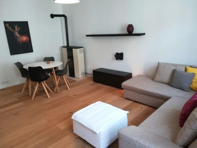 Apartment for rent from 19 Mar 2019 (Braunhirschengasse, Vienna)