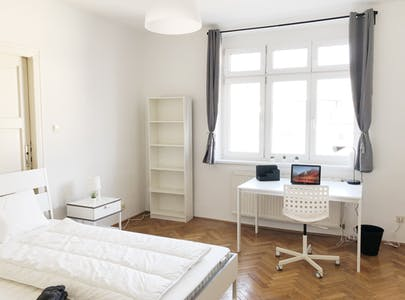 Private room for rent from 01 Feb 2020 (Schusswallgasse, Vienna)