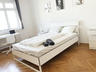 Private room for rent from 01 Apr 2020 (Schusswallgasse, Vienna)