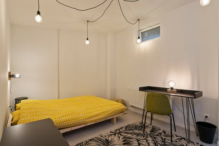 Private room for rent from 01 Jul 2020 (Rue de Pavie, Brussels)