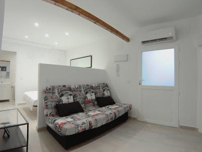 Apartment for rent from 14 Jun 2019 (Calle de Berruguete, Madrid)