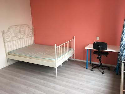 Private room for rent from 01 Apr 2020 (Rose-Spoorstraat, Rotterdam)