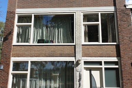 Verfügbar ab 01 Juli 2021 (Marco Pololaan, Utrecht)