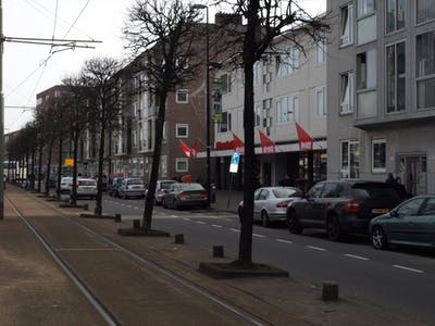 Private room for rent from 01 Aug 2019 (Schiedamseweg, Rotterdam)