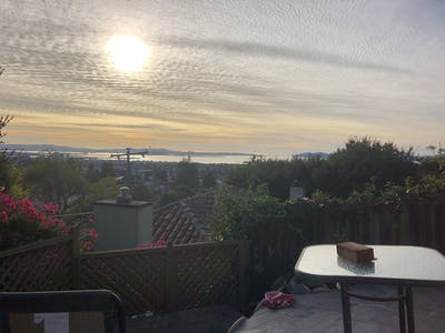 Shared room for rent from 22 May 2019 (Cedar St, Berkeley)