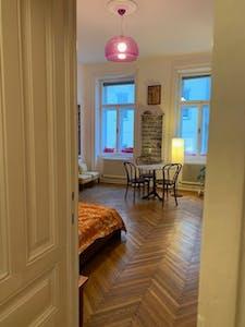 Stanza privata in affitto a partire dal 01 Dec 2019 (Löwengasse, Vienna)