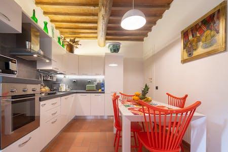Wohnung zur Miete von 22 März 2019 (Via dei Macci, Florence)