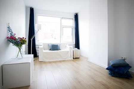 Apartment for rent from 01 Apr 2019 (Zwetstraat, The Hague)