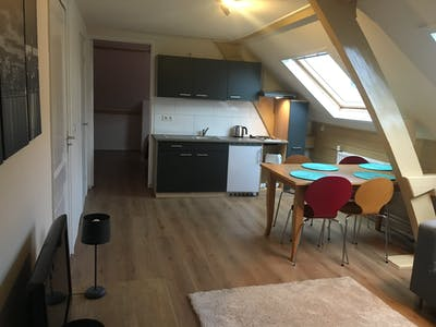 Apartment for rent from 01 May 2019 (Spijkerlaan, Arnhem)