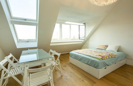 Private room for rent from 16 Jul 2020 (Traisengasse, Vienna)
