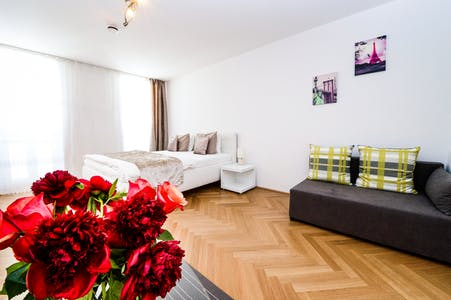 Apartment for rent from 01 Oct 2019 (Gentzgasse, Vienna)