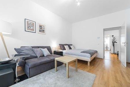 Appartamento in affitto a partire dal 01 mar 2020 (Heinzelmanngasse, Vienna)