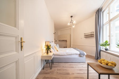 Apartment for rent from 15 Jan 2020 (Dominicusstraße, Berlin)