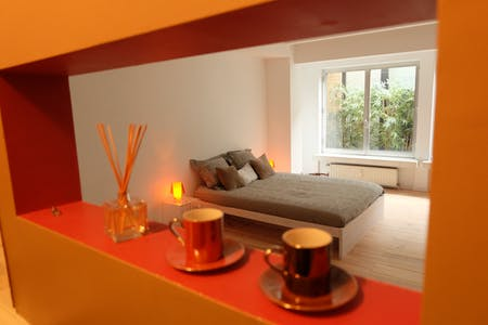 Apartment for rent from 03 Feb 2020 (Rue du Lac, Brussels)