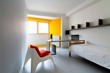 Private room for rent from 27 Jan 2020 (Generaal Jacqueslaan, Ixelles)