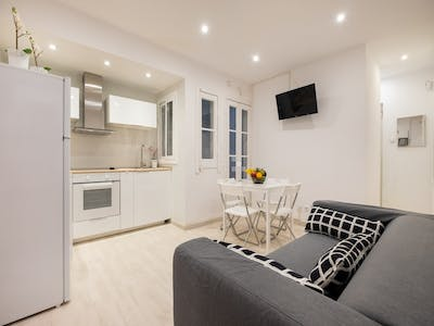 Apartment for rent from 31 May 2020 (Carrer de Santa Carolina, Barcelona)