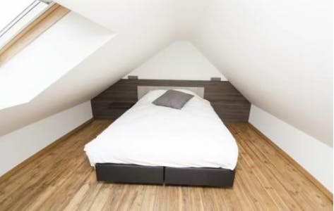 Private room for rent from 01 May 2020 (Rue Philippe Baucq, Etterbeek)