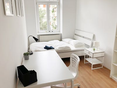 Private room for rent from 01 Aug 2020 (Steingasse, Vienna)