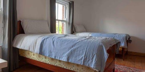 Shared room for rent from 12 Jan 2020 (Clanbrassil Street Upper, Dublin)