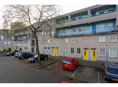 Private room for rent from 01 Nov 2019 (Snelfilterweg, Rotterdam)
