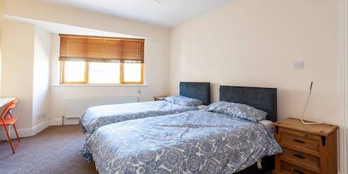 Stanza condivisa in affitto a partire dal 05 Jan 2020 (Pinewood Grove, Dublin)
