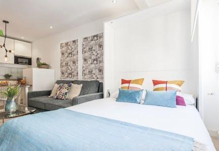 Appartement à partir du 17 Aug 2019 (Calle de Hermosilla, Madrid)