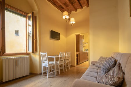 Apartment for rent from 15 Dec 2019 (Sdrucciolo dei Pitti, Florence)